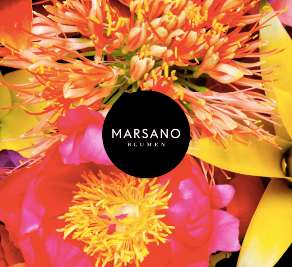 Marsano – Beautiful flowers